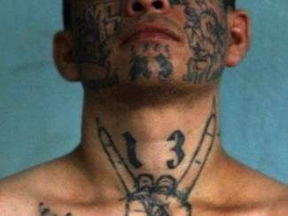 Massacre of New York Teens Tied to Central American MS-13 Gang