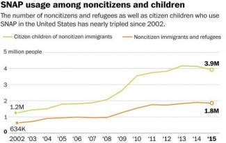 Illegal Aliens Cancel SNAP Benefits for Fear of Being Deported